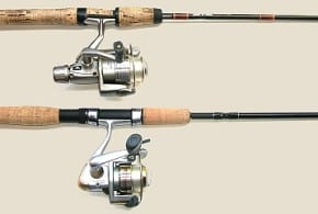Saltwater vs Freshwater Fishing Reels