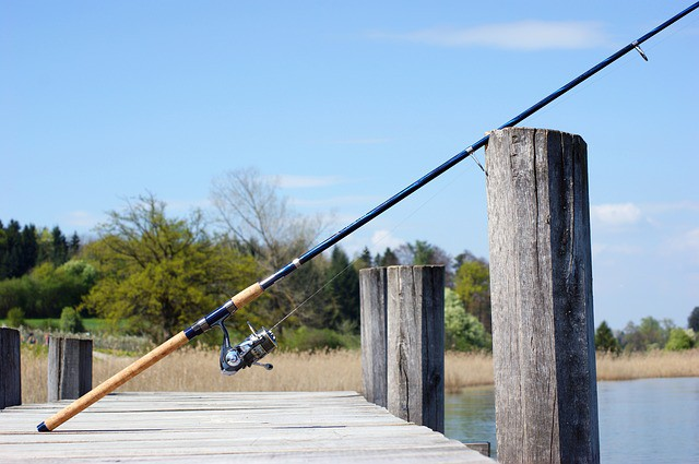 10 essentials fishing tips for the new angler for Most expensive fishing rod