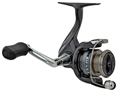 Shimano Sienna from the front