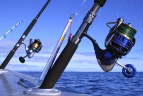 Best All Around Saltwater Spinning Reels 2018 Guide
