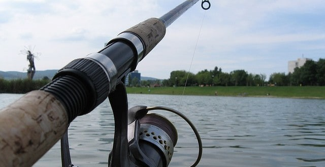 Amazon spinning reels why amazon best spinning reel 2017 for Best fishing reels 2017