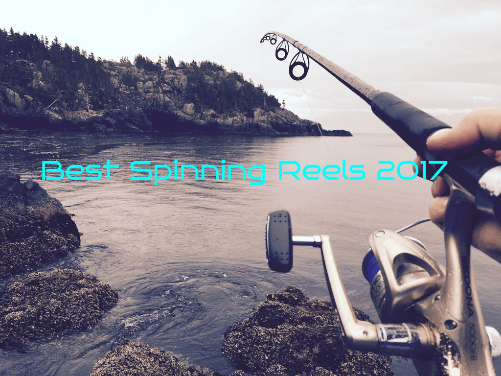 best spinning reels of 2017 cover photo
