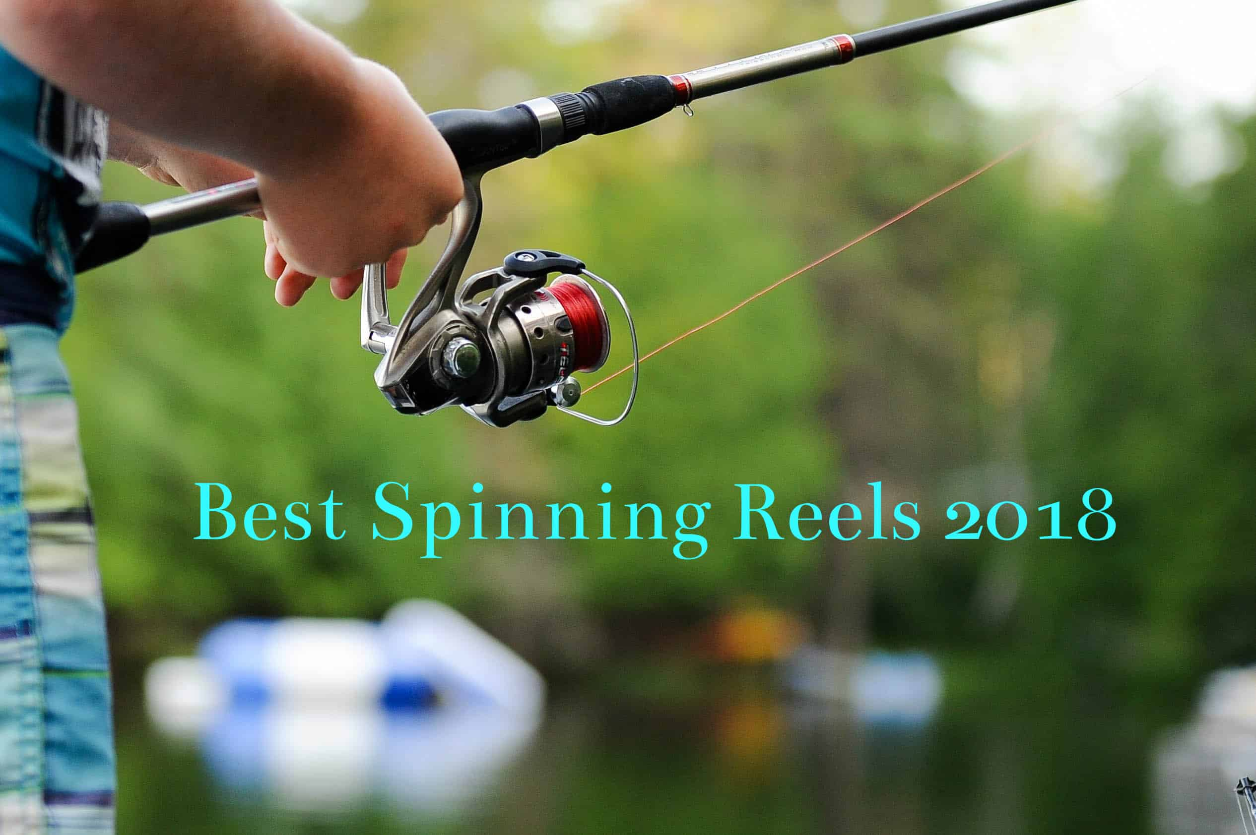 best spinning reels of 2018 cover photo