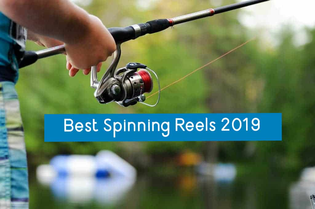best spinning reels of 2019 cover photo
